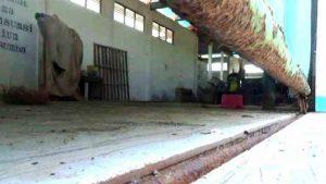 Pabrik Garam