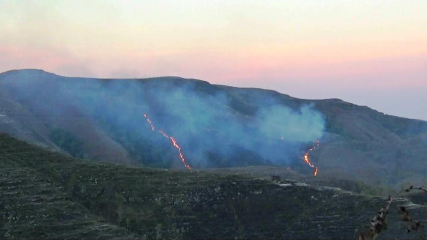 Kebakaran Padang Sabana